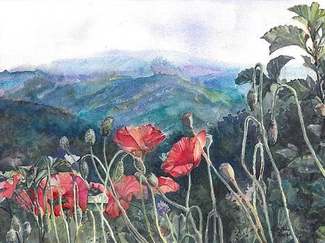 Italian Poppies by Sarah Kovin Snyder
