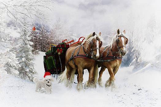 A Christmas Wish by Shanina Conway