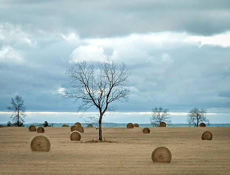 It's Hay Day by EG Kight