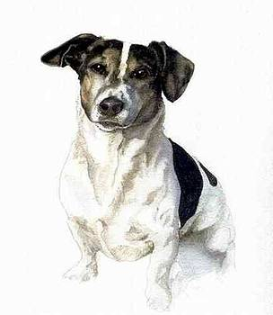 Jack Russell Terrier by Olde Time  Mercantile
