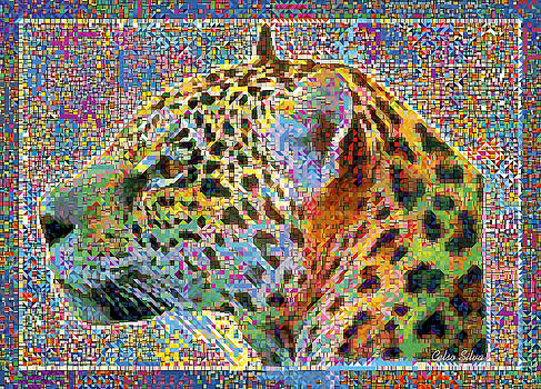 Jaguar in Colours Explosion by Celso Maria