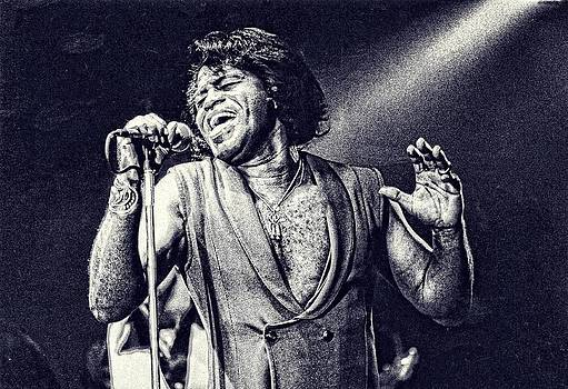James Brown On Stage by Maciej Froncisz