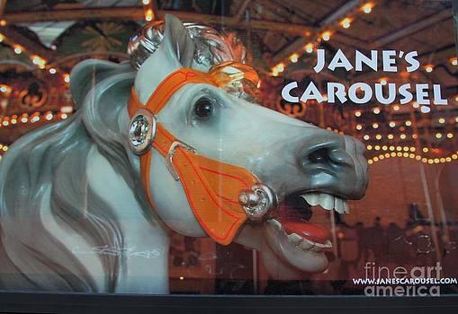 Jane's Carousel by Freda Sbordoni