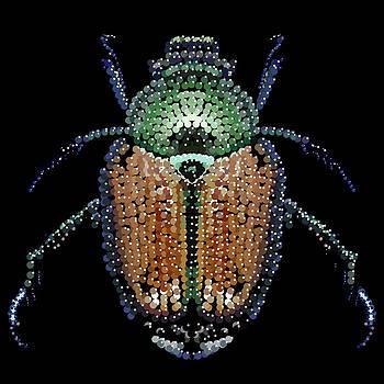 Japanese Beetle Bedazzled by R  Allen Swezey