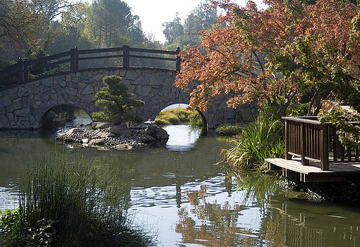 Japanese Garden by Alice Ramirez