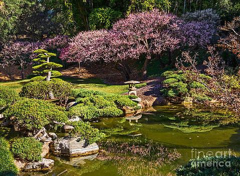 Jamie Pham - Japanese Garden Blossom