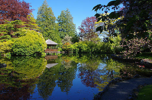 Marilyn Wilson - Japanese Garden Pond - View 2
