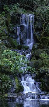 Japanese Garden Serenity 2 by Cassius Johnson