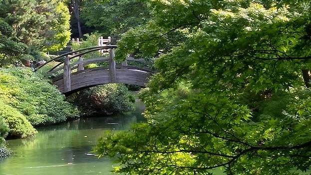 Japanese Gardens Bridge in Fort Worth Texas by Shawn Hughes