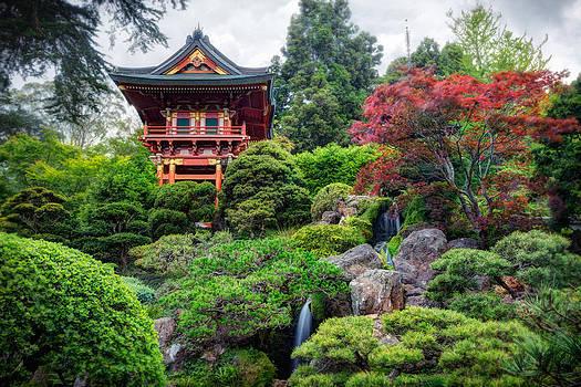Adam Romanowicz - Japanese Tea Garden - Golden Gate Park