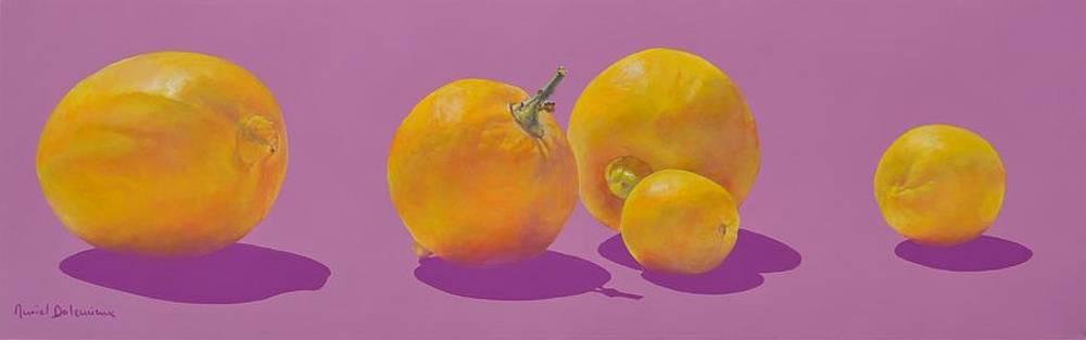 Jaunes et Mauves Citrons by Muriel Dolemieux