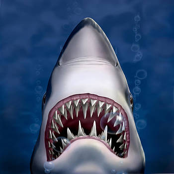 Jaws Great White Shark Art - Square Format by Walt Curlee