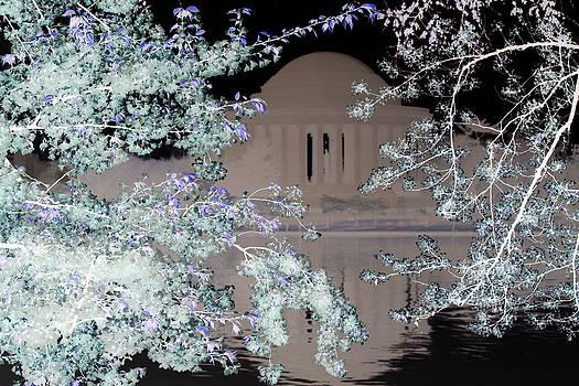 Carolyn Stagger Cokley - jefferson blossoms