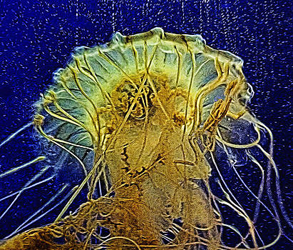 Jellyfish Abstract by Janet Maloy