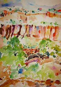 Jemez Cliff Study by Jeffrey S Perrine