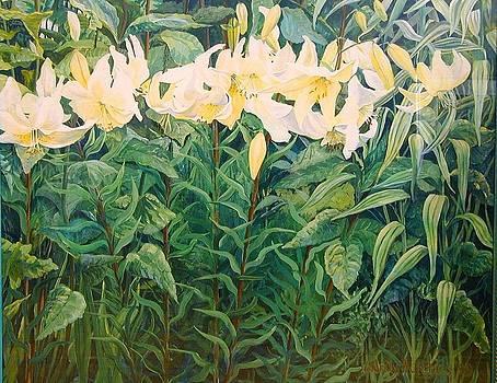 Jenny's Lilies by Wendy Head