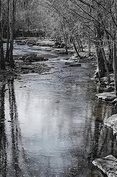 Jessamine Creek by Diana Boyd