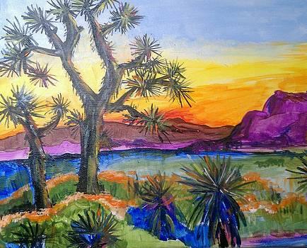 Joshua Tree at sunset by Paula Stacy Adams