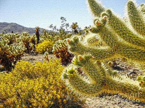 Gregory Dyer - Joshua Tree Cholla Cactus Garden