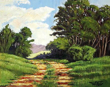 Journey by Wayne Fair