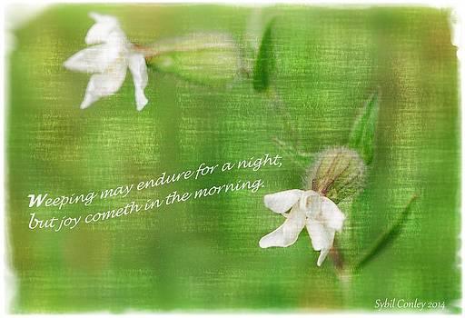 Joy cometh in the Morning by Sybil Conley