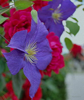 June colours by Marija Djedovic