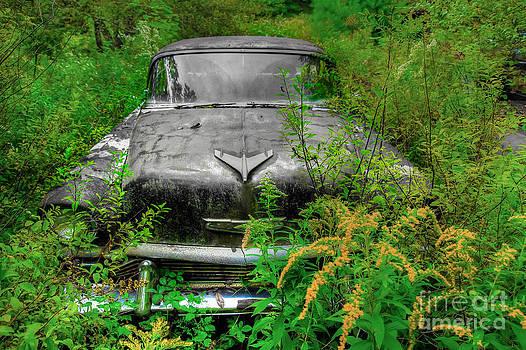 Brenda Giasson - Jungle Fever Vintage Chevy