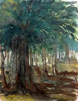 Jungle Painting by Hashim Khan