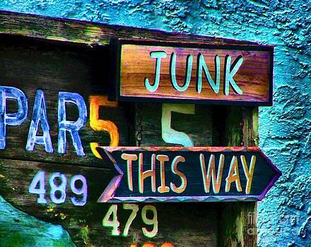Julie Dant - Junk This Way