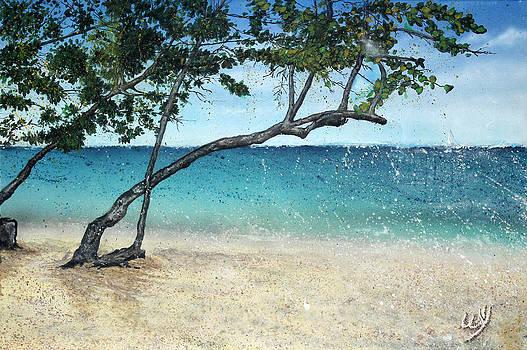 Just Beachy by Bill Yurcich