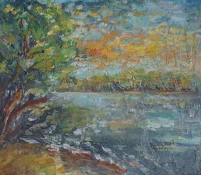 Jutro na Dunavu by Buba Glodjovic