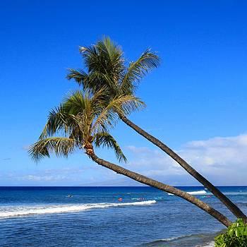 Kaanapali Hawaii by DJ Florek
