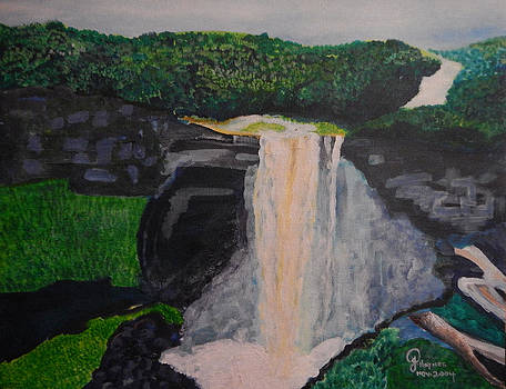 Kaieteur Falls by Julietta  Haynes