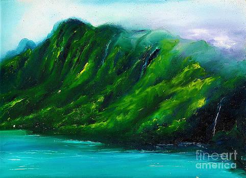 Kailua Hawaii by Donna Chaasadah