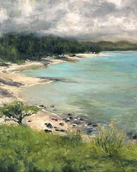 Stacy Vosberg - Kailua