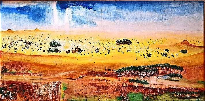 Kalahari Rain by Meyer Van Rensburg
