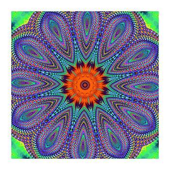 Kaleido Colorful by Ck Gandhi