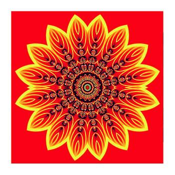 Kaleido Flower Bright Red by Ck Gandhi