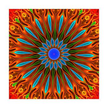 Kaleido flower vibrations by Ck Gandhi