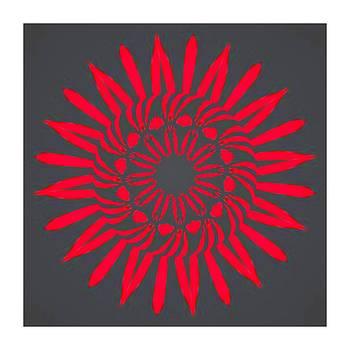 Kaleido - Red Sunflower by Ck Gandhi