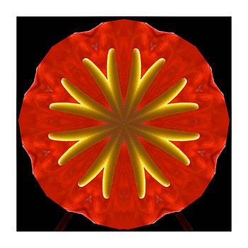 Kaleidoscope-Red Flower by Ck Gandhi