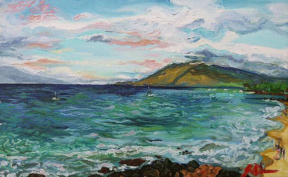 Kamaole Beach by Joseph Demaree
