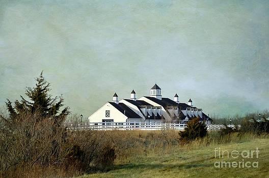 Liane Wright - Kansas Landscape