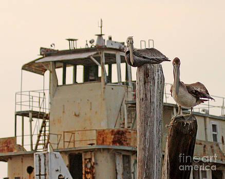 Katrina Ghost Boat and Pelicans by Luana K Perez