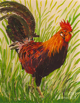 Kauai Rooster by Anna Skaradzinska