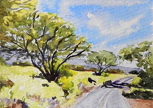 Stacy Vosberg - Kaupo Trees