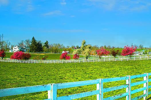 Randall Branham - Keeneland Horse Farm