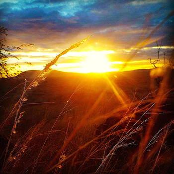 Kenyan Sunset by Henry  Turner