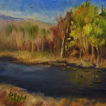 Kern River CA by Patricia Seitz