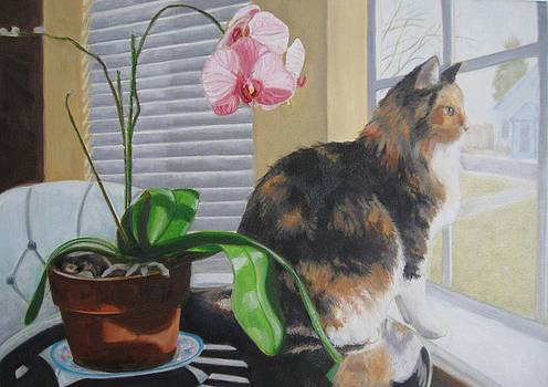 Keta and the Orchid by Karen Snider